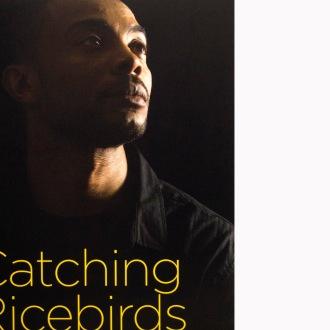 Catching Ricebirds