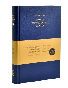 NA28 Large Print Edition
